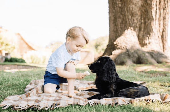 Prince George with a dog