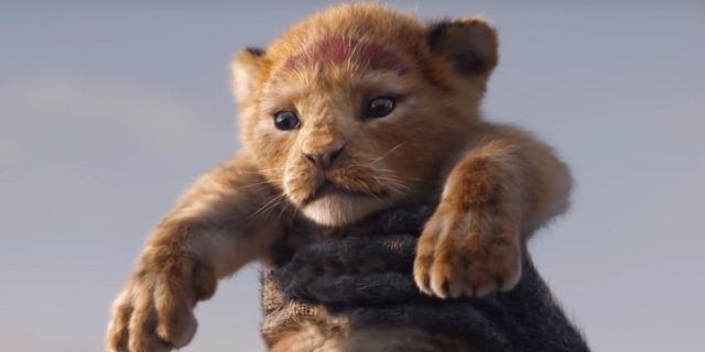 Simba in The Lion King 2019