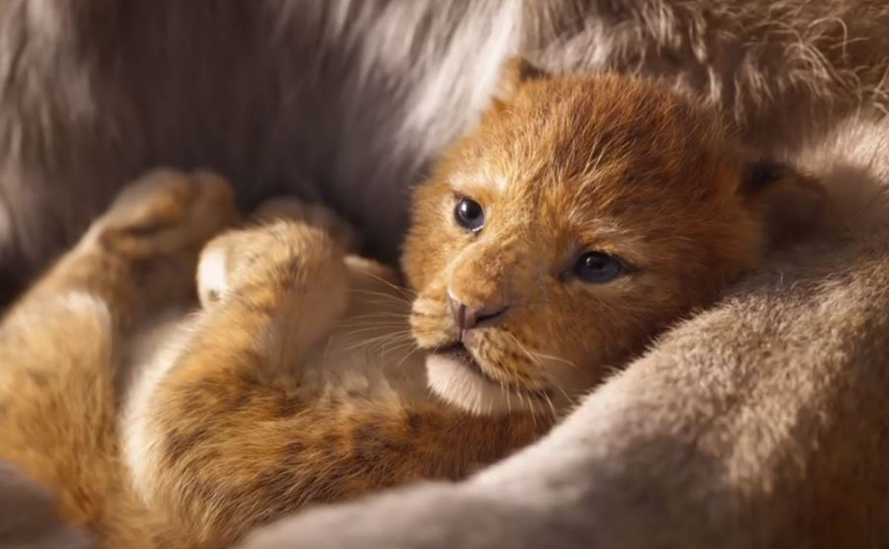 The Lion King' 2019: When is the Live-Action Movie Release Date?