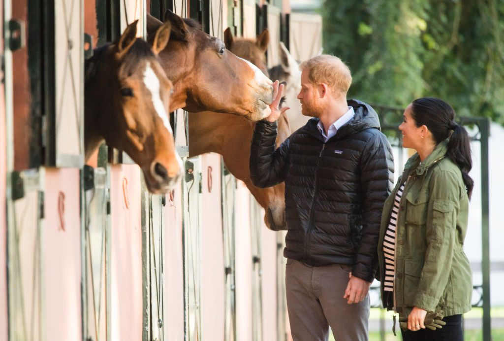 Meghan Markle and Prince Harry pet a horse.