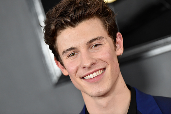 How Did Shawn Mendes Become Famous?
