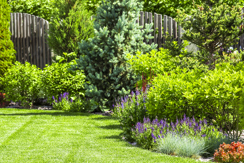 Best Garden Shows on Netflix