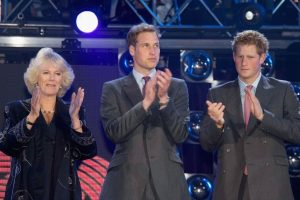 How Prince William and Prince Harry Really Feel About Camilla Parker Bowles