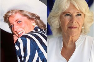 Who Had the Higher Net Worth Before Marrying Prince Charles: Princess Diana or Camilla Parker Bowles?