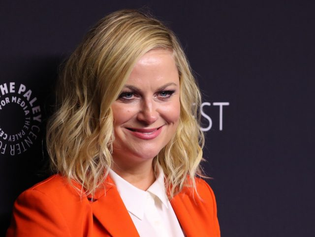 Is Amy Poehler Married?