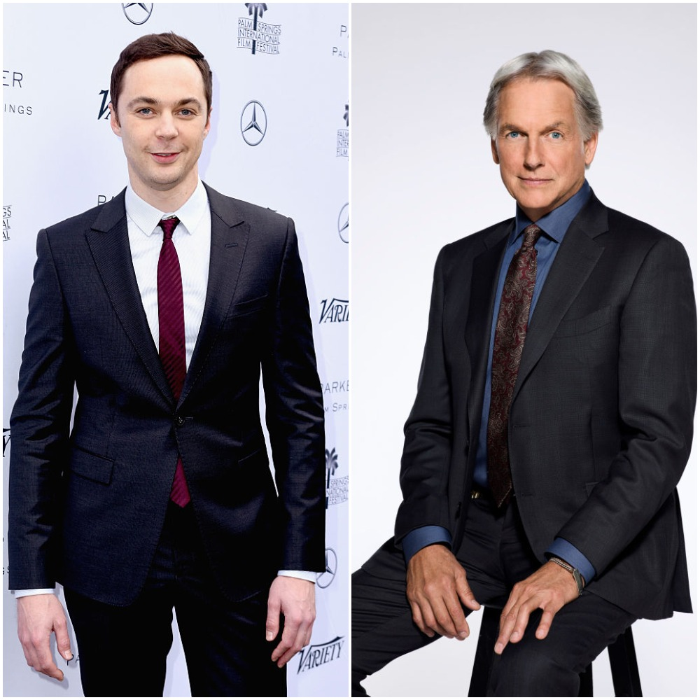 Jim Parsons and Mark Harmon