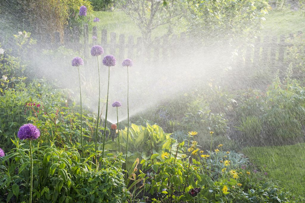 Sprinklers in the flower garden