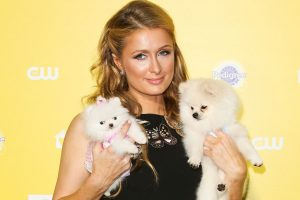 Paris Hilton's Infamous Iron Bacon Hack Was Ahead of Its Time