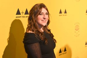 'The Big Bang Theory': Will Mayim Bialik Keep Acting Now That the Show Has Ended?