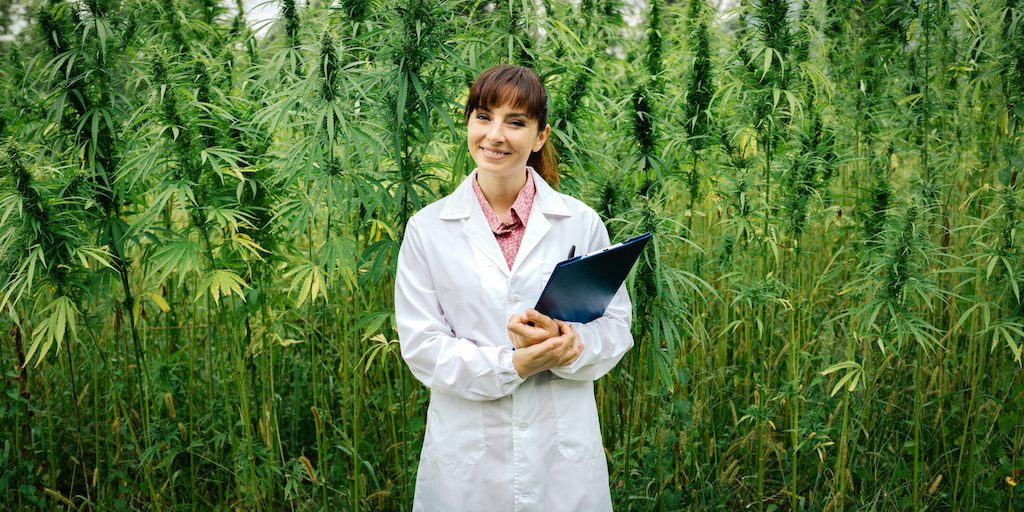Confident doctor in a hemp field |  | cyano66/Getty Images