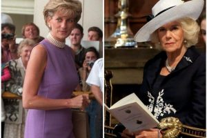 How Camilla Parker Bowles Tricked Princess Diana To Hide Affair With Prince Charles