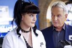 The Pauley Perrette Mark Harmon 'NCIS' Drama Wasn't About A Dog Bite, It Was About Intimidation And Alleged Assault