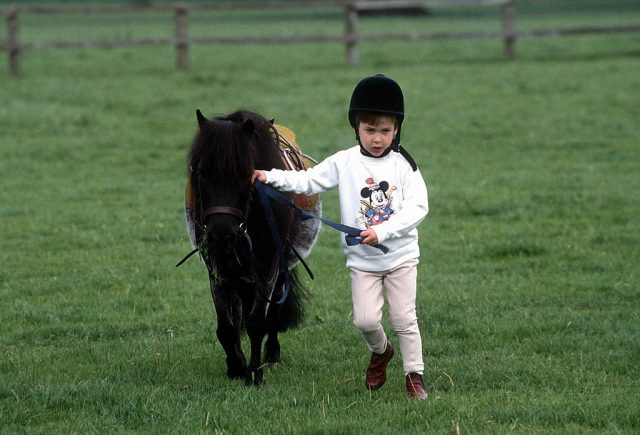 Prince William and pony