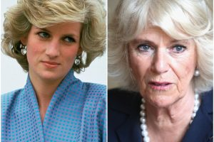 Royal Fans Are Furious Over the Shocking Thing Camilla Did With Princess Diana's Jewelry
