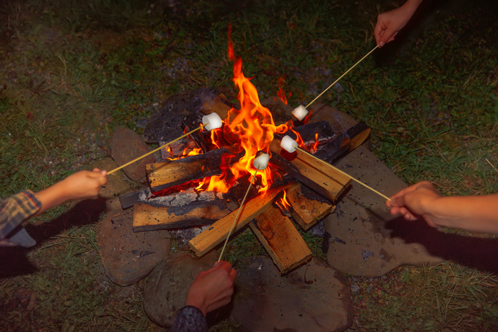 Roasting marshmallows on a campfire