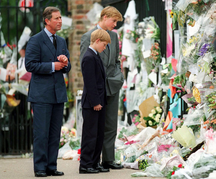 Prince Harry, Prince William, Prince Charles