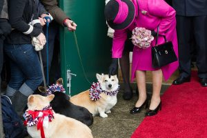 Are Any of Queen Elizabeth II's Corgis Still Alive?