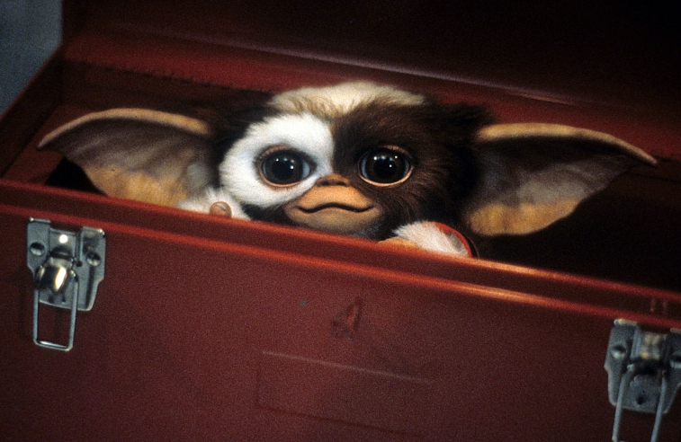 Gizmo from Gremlins.