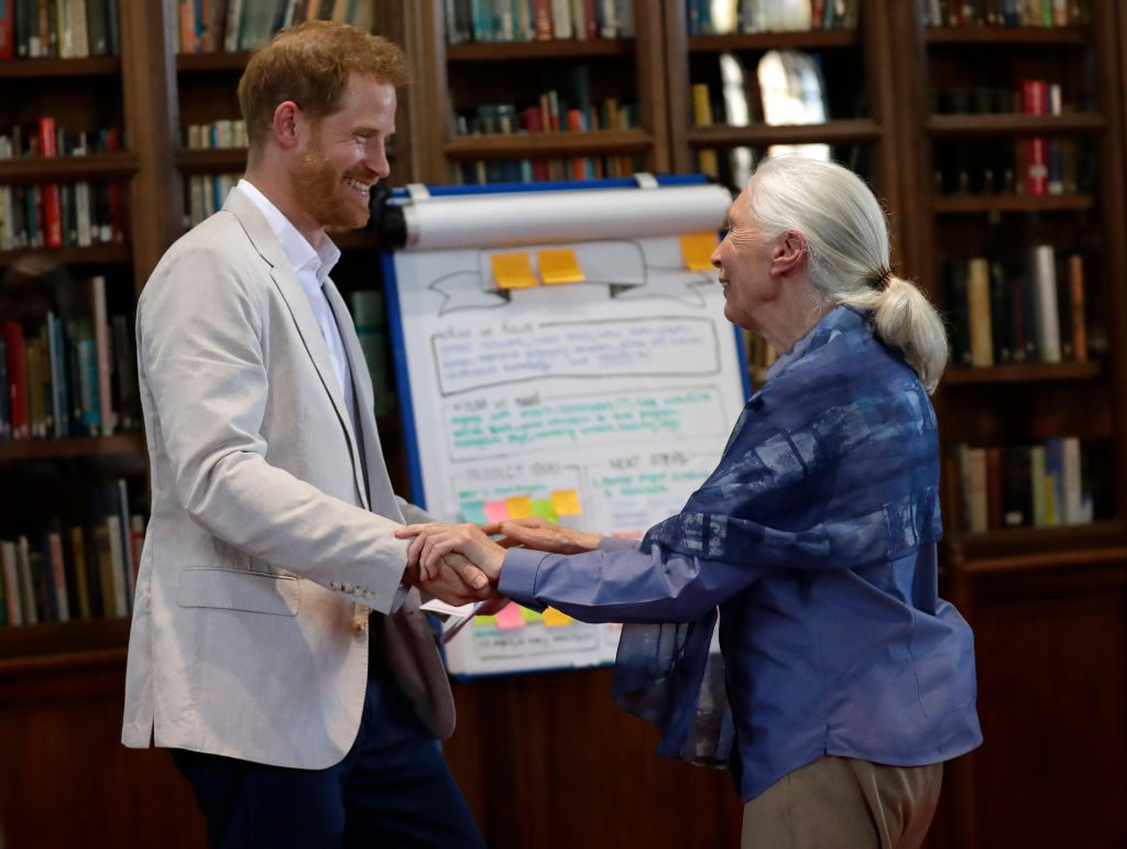 Prince Harry attends Dr. Jane Goodall's Roots & Shoots Global Leadership Meeting