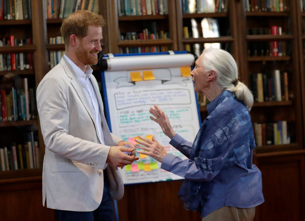 Prince Harry and Jane Goodall hug, says she's met Meghan Markle and Archie