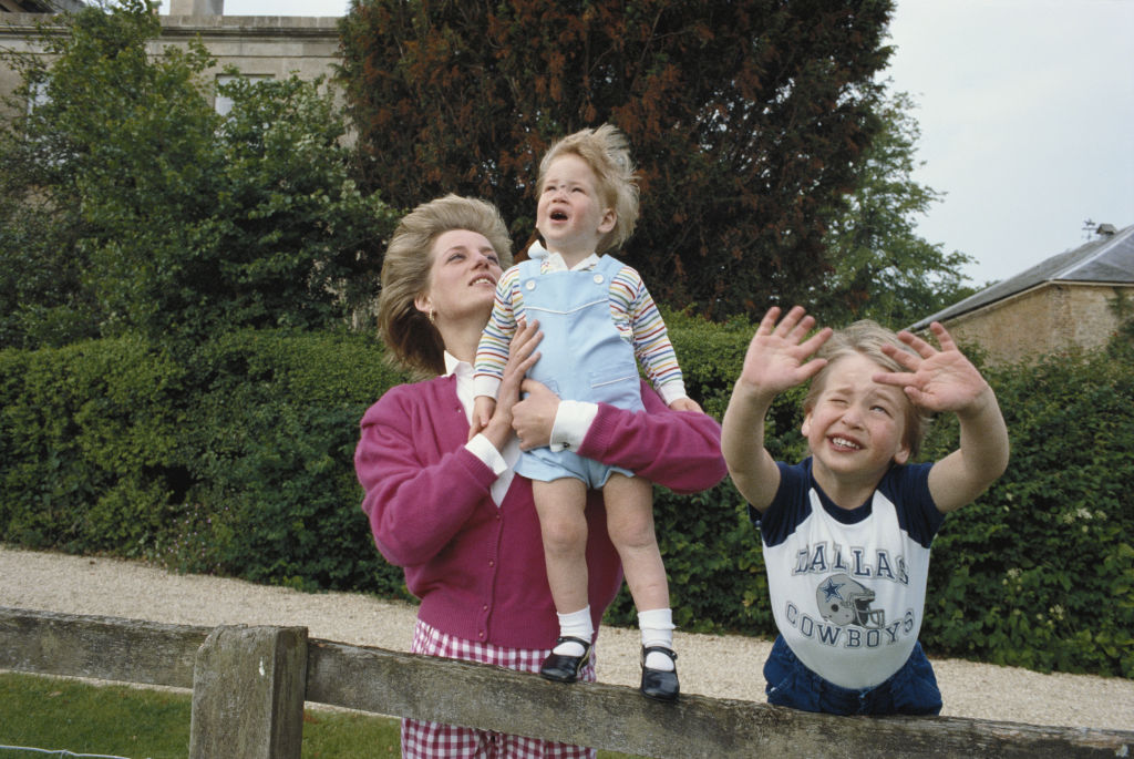 Princes William and Harry with their mother, Diana, Princess of Wales
