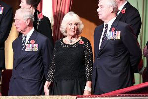 Did Prince Andrew Spread Lies About Camilla Parker Bowles Amid Feud With His Brother, Prince Charles?