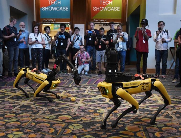 Robot dogs by Boston Dynamics