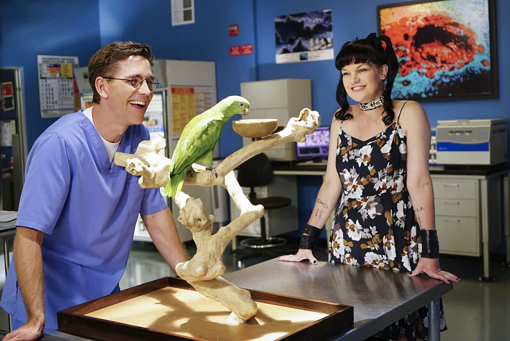Brian Dietzen and Pauley Perrette |Sonja Flemming/CBS via Getty Images