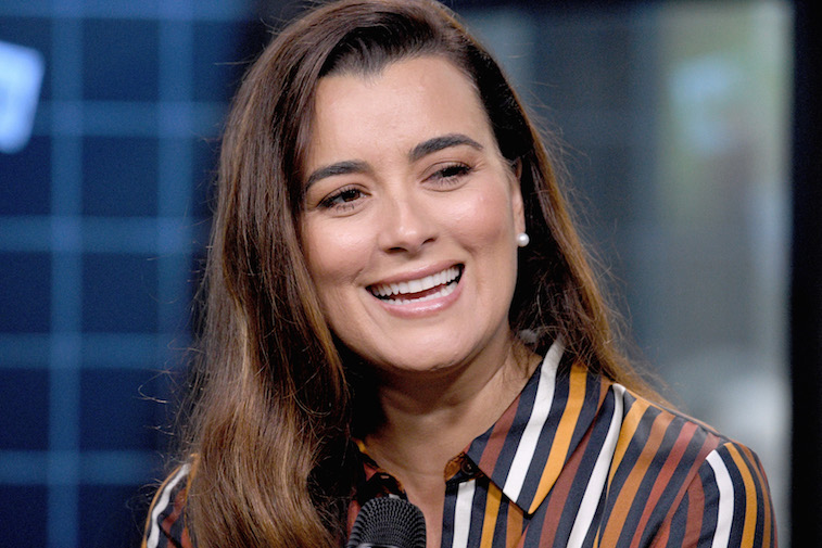 Cote de pablo return ncis