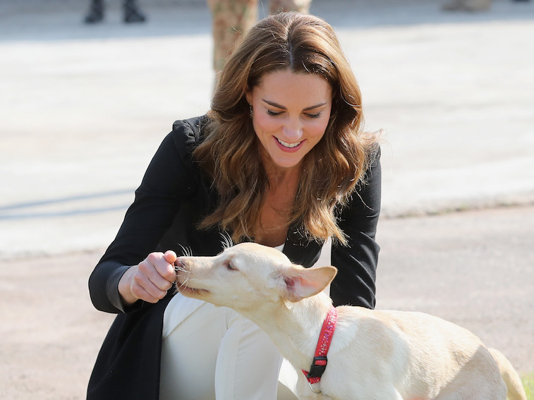 Kate Middleton feeding a dog a treat