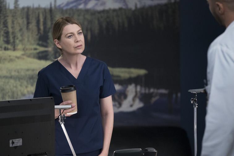 Ellen Pompeo as Meredith Grey