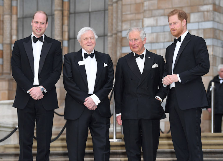 Prince William and Prince Harry standing outside a museum for a photo