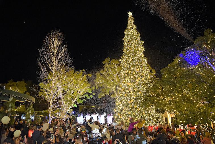 Christmas tree lighting celebration at night