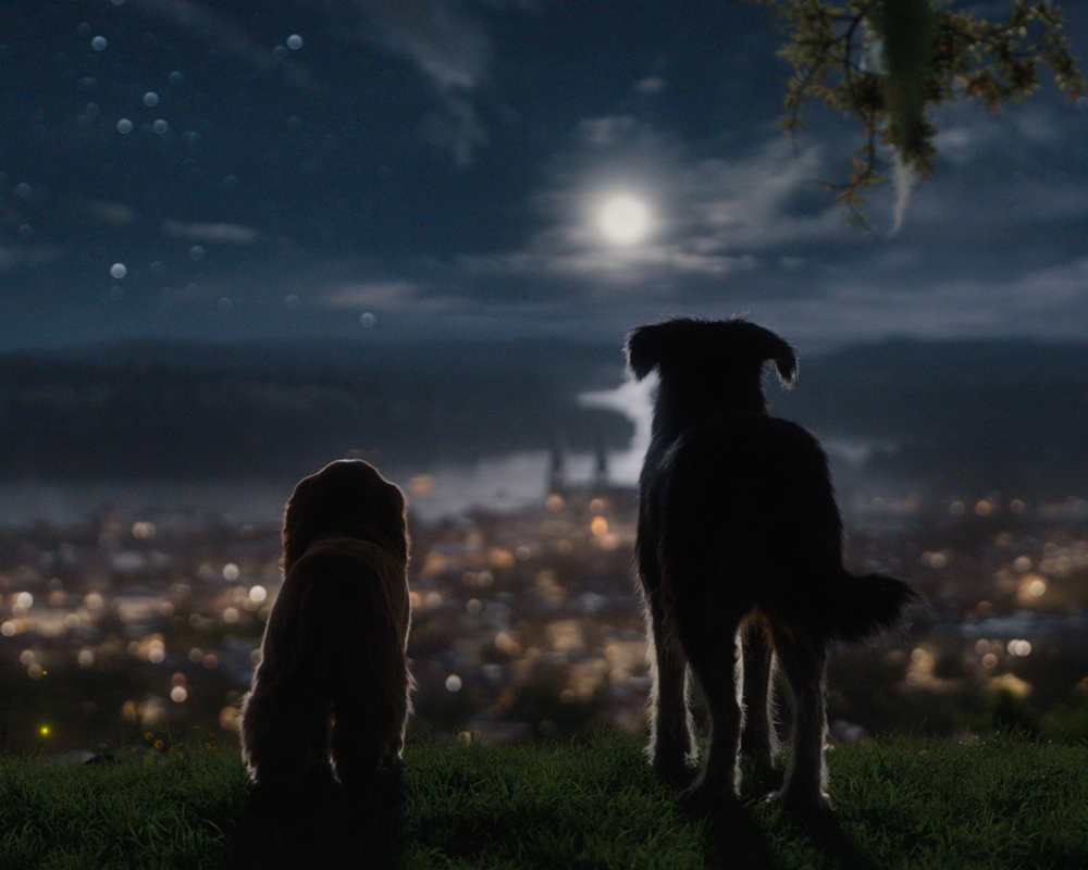 Lady and the Tramp in the moonlight