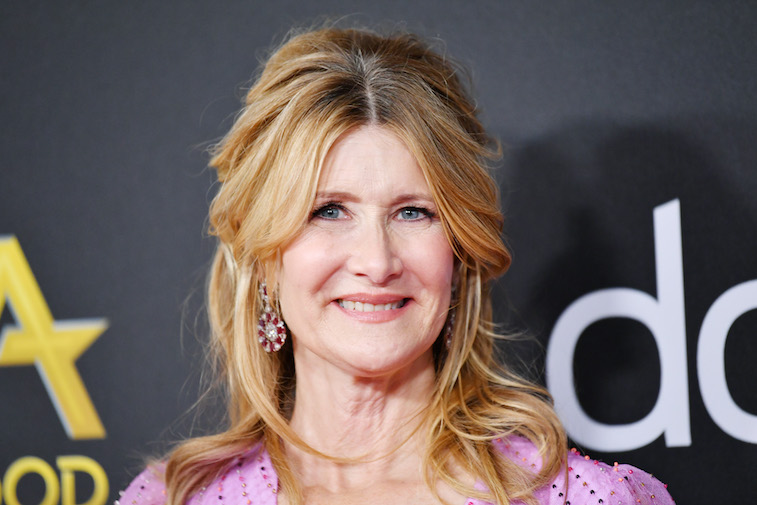 Laura Dern on the red carpet