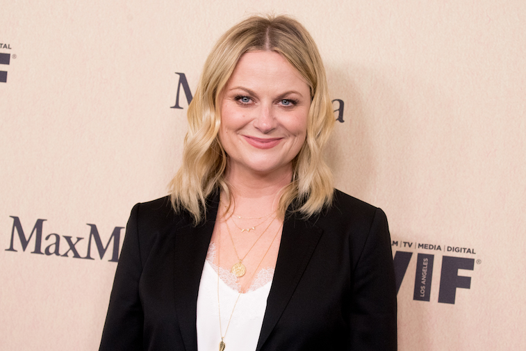 Amy Poehler on the red carpet