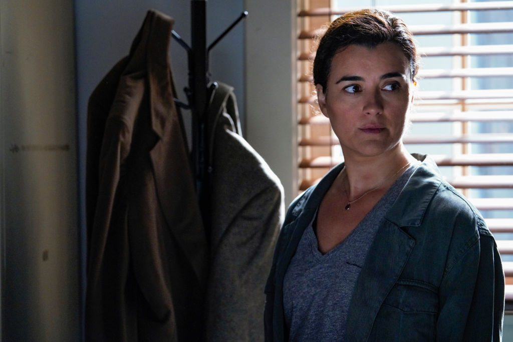 Cote de Pablo as Ziva David on NCIS.   Cliff Lipson/CBS via Getty Images