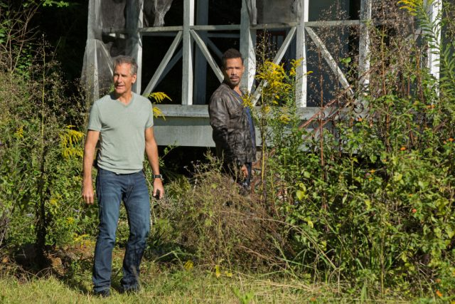 'NCIS: New Orleans': Who Plays Pride's Brother?