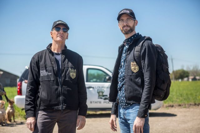 'NCIS: New Orleans': Fans Say These Things in the Fall Finale Aren't Realistic