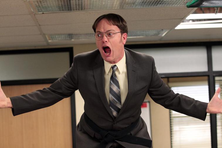 Rainn Wilson as Dwight on The Office