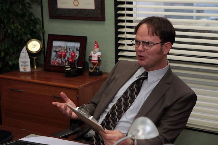 Rainn Wilson as Dwight Schrute on The Office