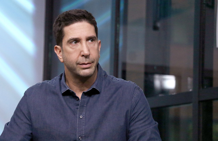 David Schwimmer during an interview