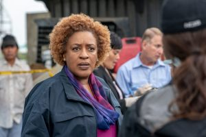 'NCIS: New Orleans': Cch Pounder Reveals the 1 'Frustrating' Thing About Filming in NOLA