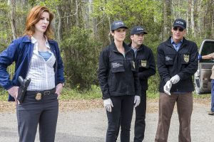 What Is Former 'NCIS' and 'SVU' Star Diane Neal Doing Now? The Actress Made Headlines For the Most Disturbing Reasons