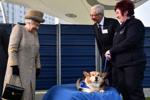 Queen Elizabeth Loved Her Corgis So Much She Broke Protocol to Honor Their History