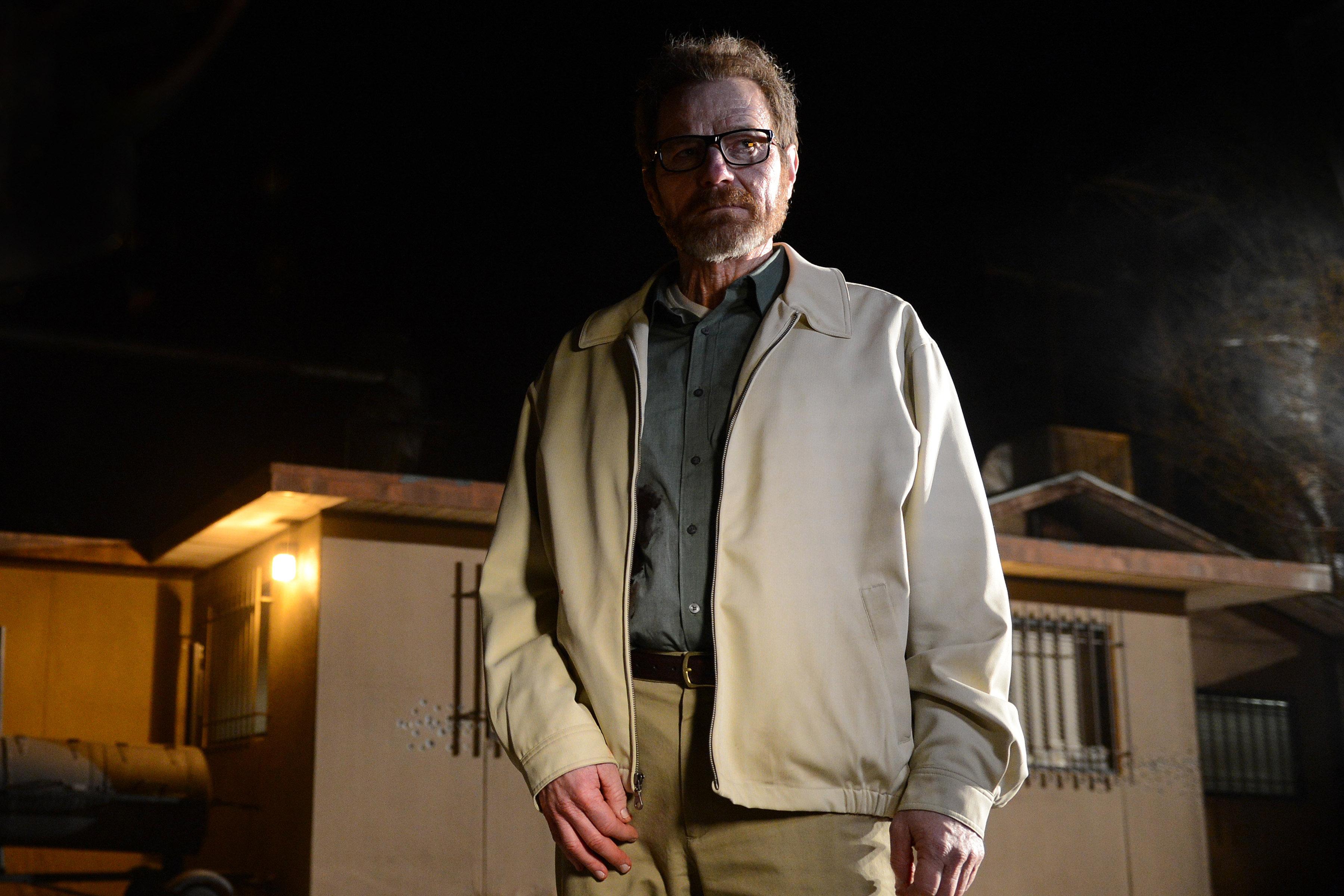 Bryan Cranston as Walter White