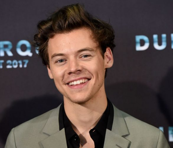 Harry Styles Dishes on His Guilty Pleasures, Biggest Fear & Underwear