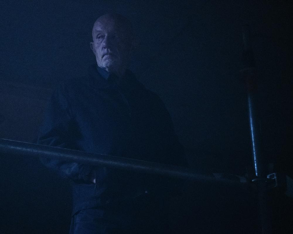 Jonathan Banks as Mike Ehrmantraut