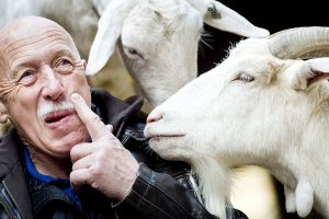 'The Incredible Dr. Pol': Which Animal Does He Watch His Back With the Most?