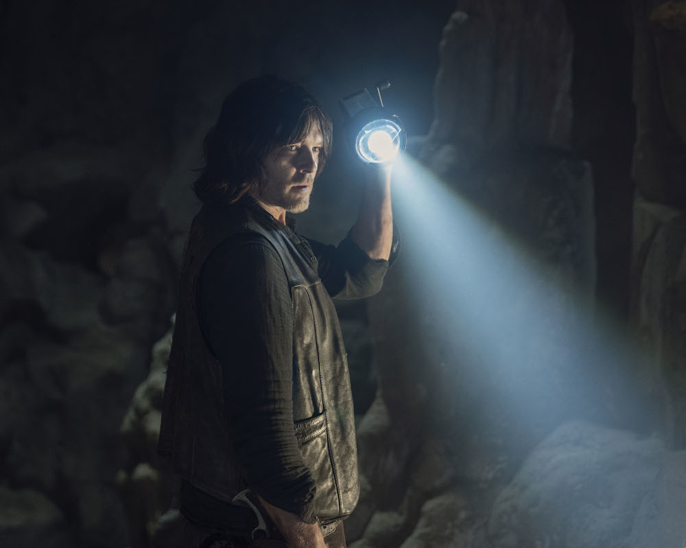 Walking Dead: Norman Reedus